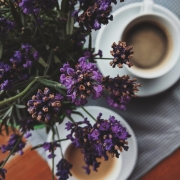 purple flowers and coffee cups