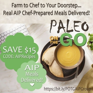 Paleo On The Go Autoimmune Meals Delivered Discount Code AIPRecipeCollection.com