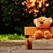 AIP Kids - Teddy Bear on a Wooden Bench
