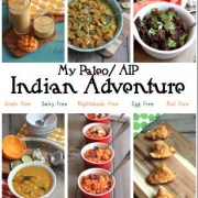 AIP Indian Adventure