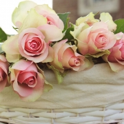 Basket of Pink rose buds